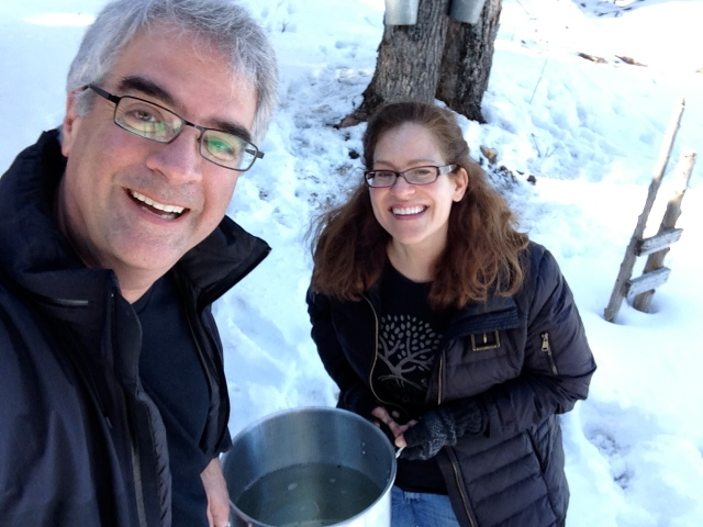 Tapping our Maple Trees